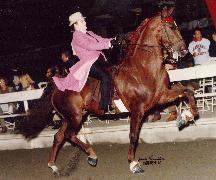 Trish in Pink on Horse